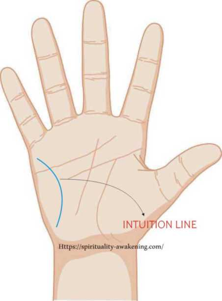 intuition line