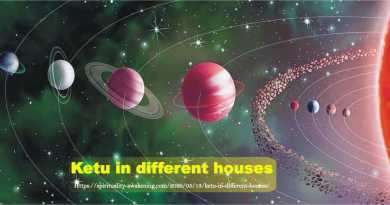 ketu in different houses