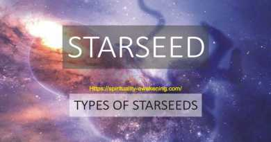 types of starseeds