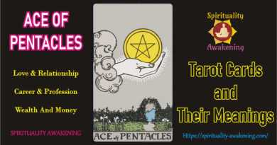 ace of pentacles love