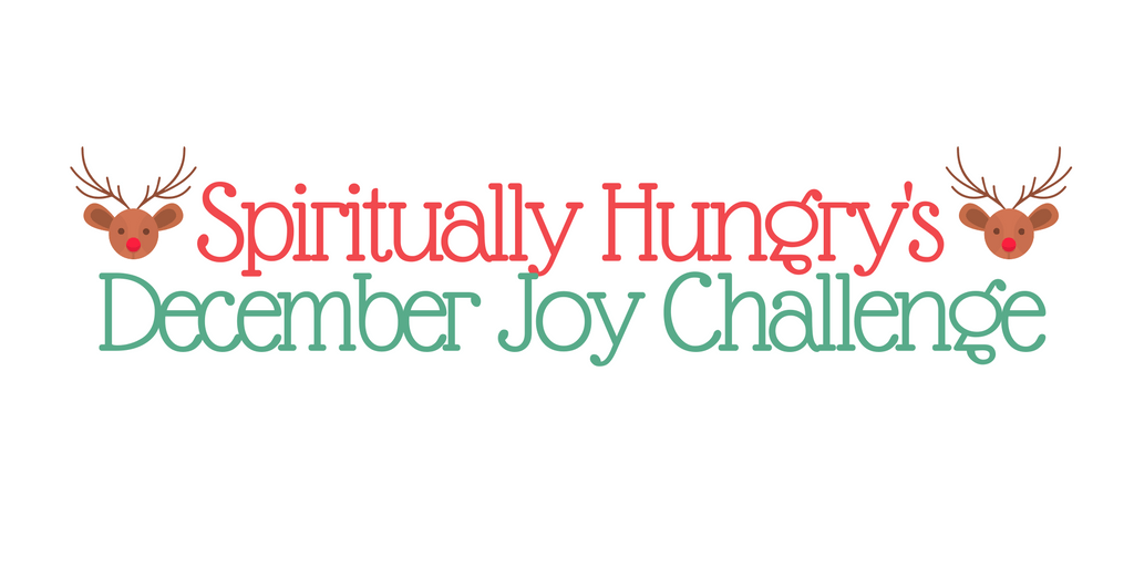 The 31 Day December Joy Challenge