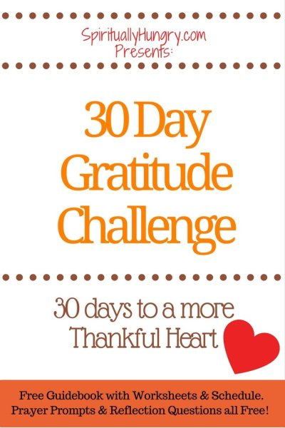 Thankfulness, Thanks, 30 Day Challenge, Thankful, Jesus