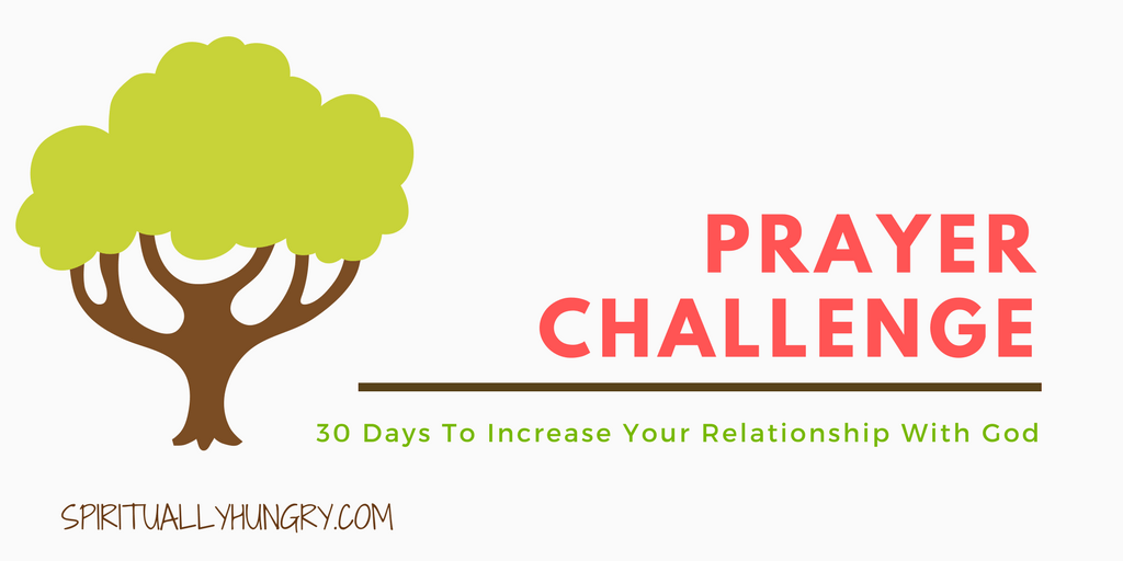 30 Day Prayer Challenge