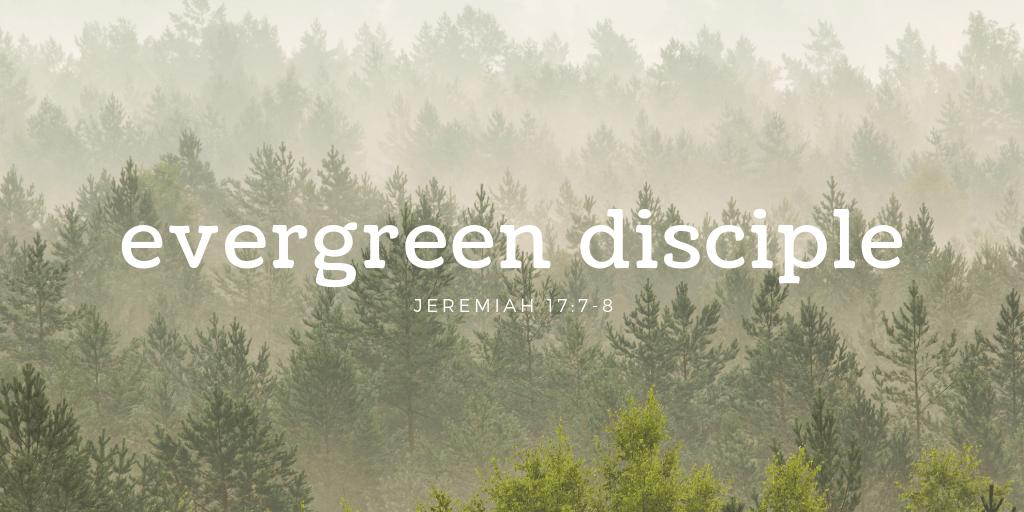 Evergreen Disciple