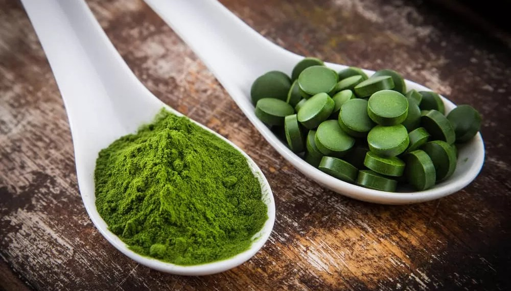 chlorella bio avis chlorella biocoop chlorella bio natesis chlorella pour maigrir chlorella bio composition chlorella cancer chlorella vulgaris chlorella bio amazon