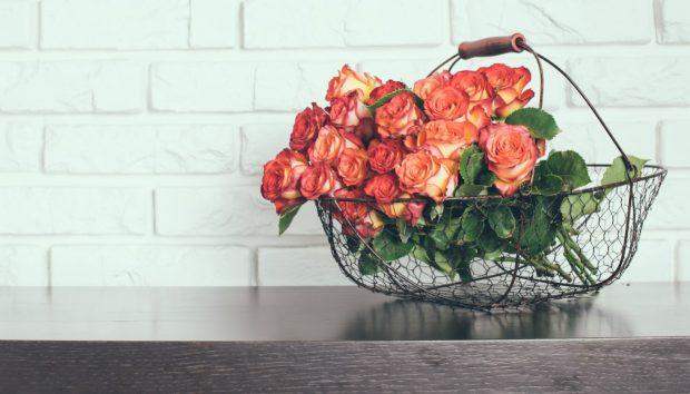 Έξυπνο Τρικ που θα Γεμίσει τη Βεράντα σας με Τριαντάφυλλα