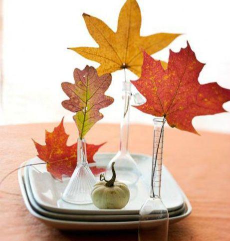 Μερικά χρωματιστά φύλλα μπορούν να φέρουν το φθινόπωρο στο σπίτι σας.