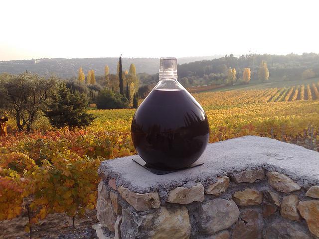 Полученный сок сливается в большие бутыли, емкостью по 20 литров. Заполнять бутыли следует на две трети, чтобы вино могло играть