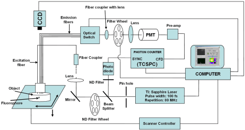 small resolution of block diagram of lifetime fluorescence imaging system