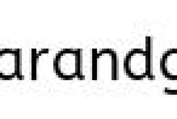 Spitfire Bar & Grill Interior of Bar