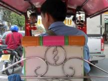 Tuk-tuk driver and passenger.