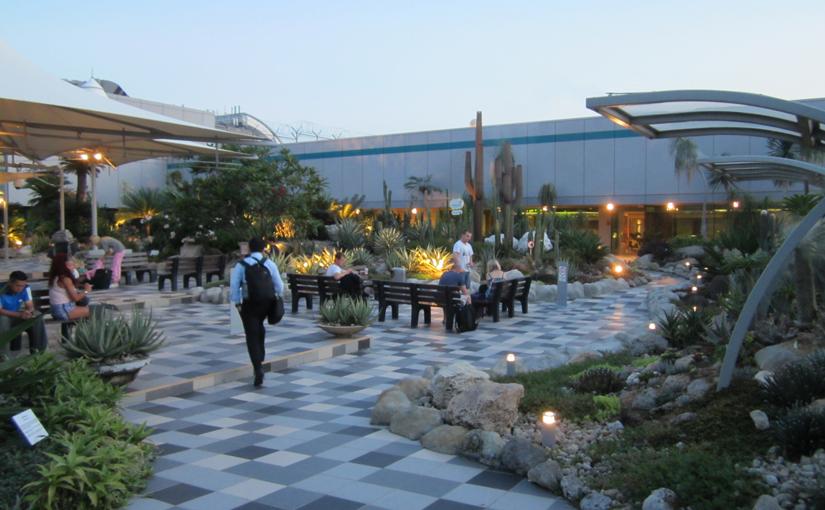 Singapore Changi Airport T1 Cactus Garden