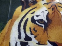 It's the eye of the tiger (it's embroidered with thread) rising up to the challenge of our rival...