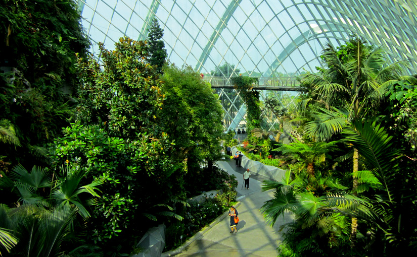 Visit to Gardens by the Bay