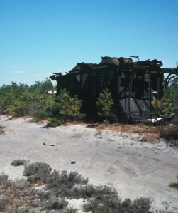 Abandoned rail car in the Pine Barrens
