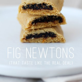 Beany vs. the Boxed Cookie: A Quest for Homemade Fig Newtons
