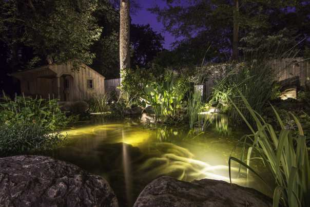 Summer Pond Maintenance York, PA; Lancaster, PA; Harrisburg, PA; Maryland