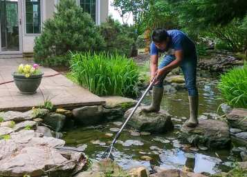 How to Clean a Pond