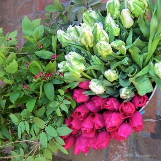 may day baskets…