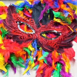 Mardi gras, the morning after….