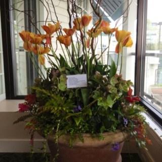 Inspired plantings…