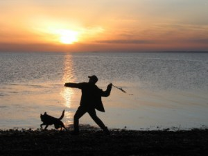 Martin throws for Minnie on Kinvara beach