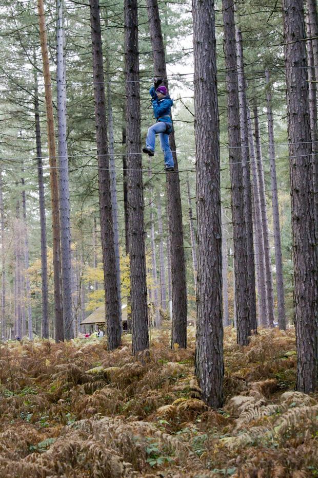 Go Ape, Sherwood Pines