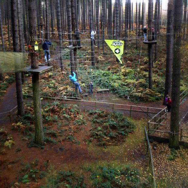 Go Ape, Sherwood Pines, Tarzan Swing