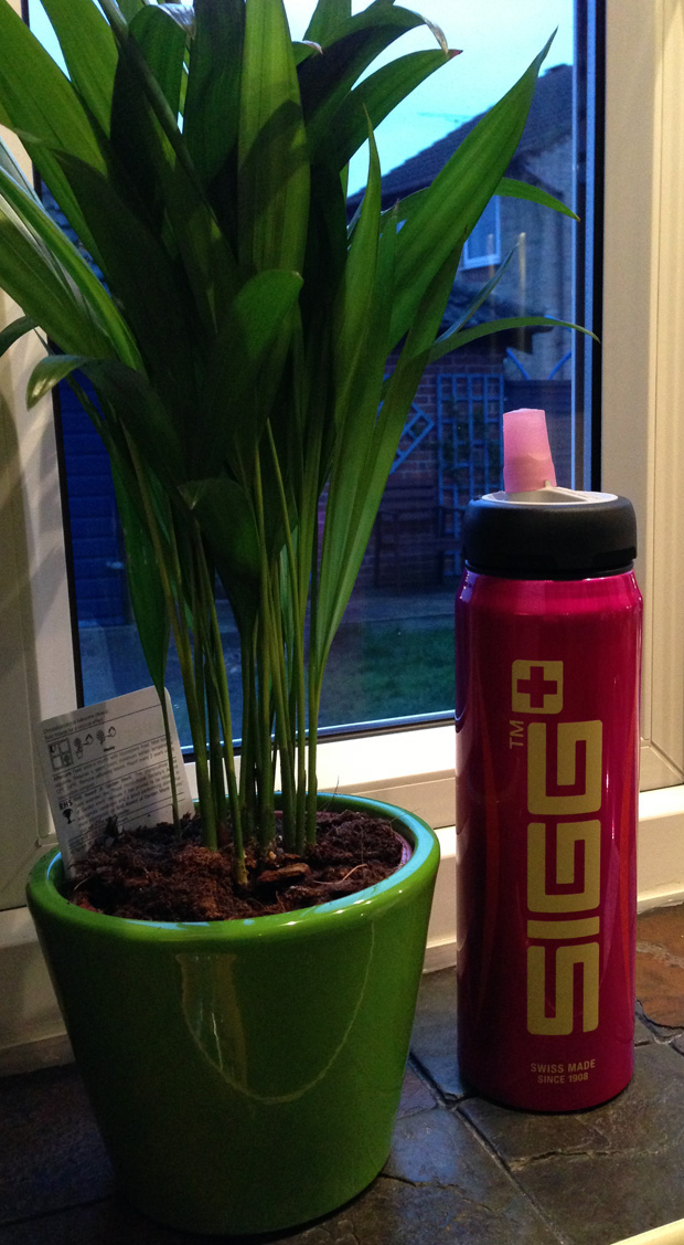 My SIGG Bottle