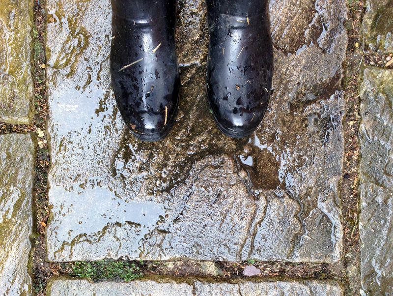 11 May - Wellington Boots in the Rain