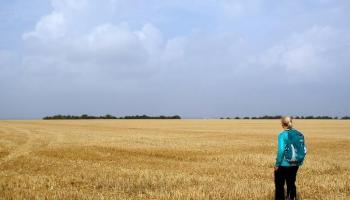 8 August - Walking on the Viking Way