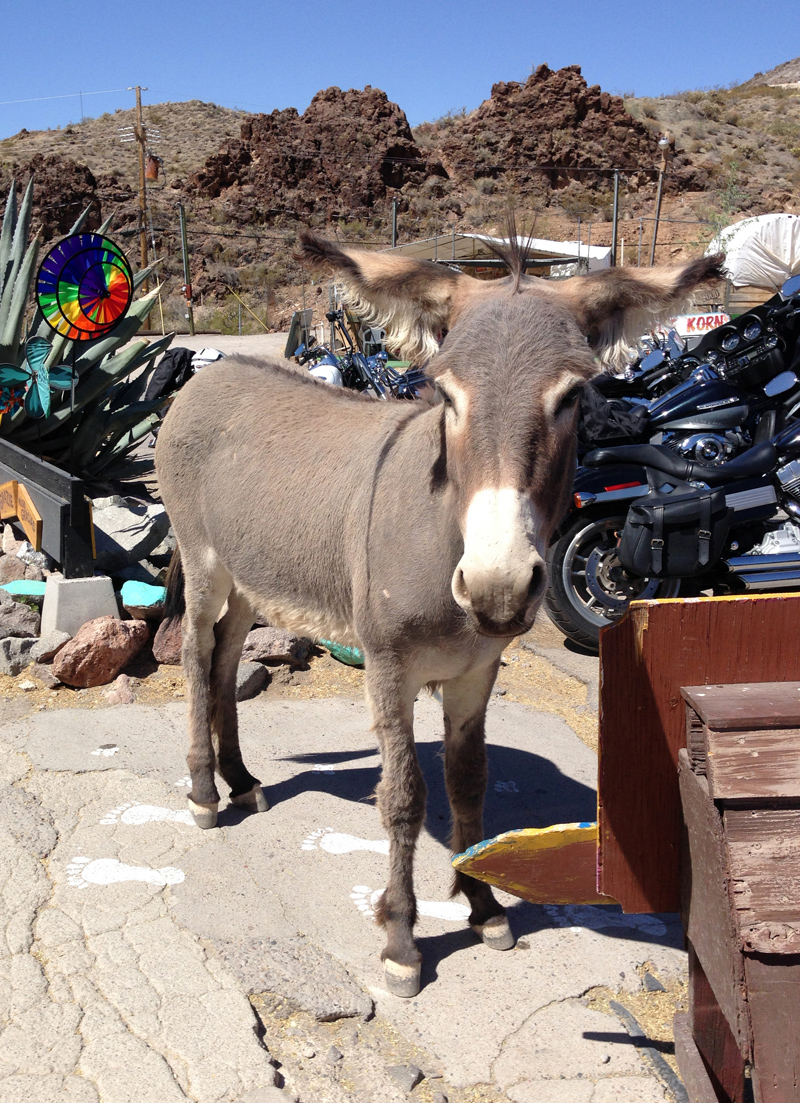 Oatman on Route 66
