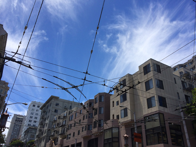 Bus wires in San Francisco
