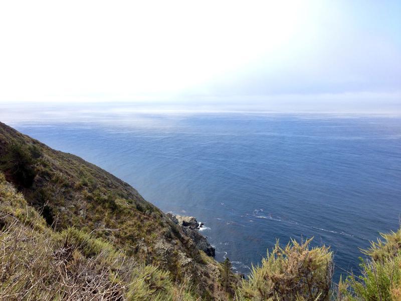 Overlooking the Pacific Ocean