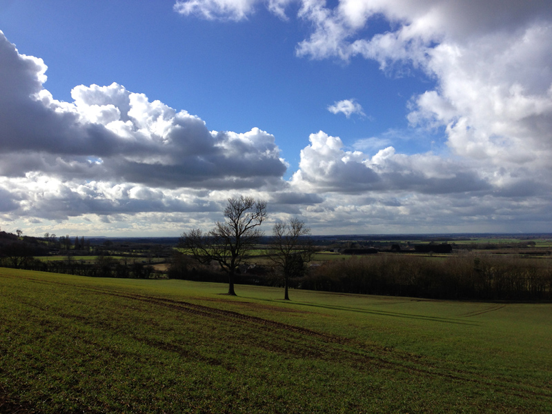 View of Lincolnshire from the Viking Way