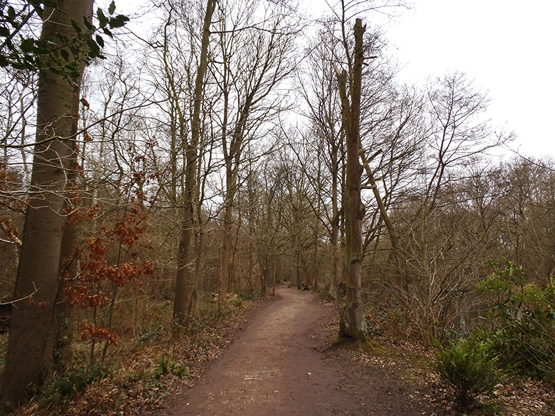 Nature's Spaces in Lincoln - Hartsholme Country Park