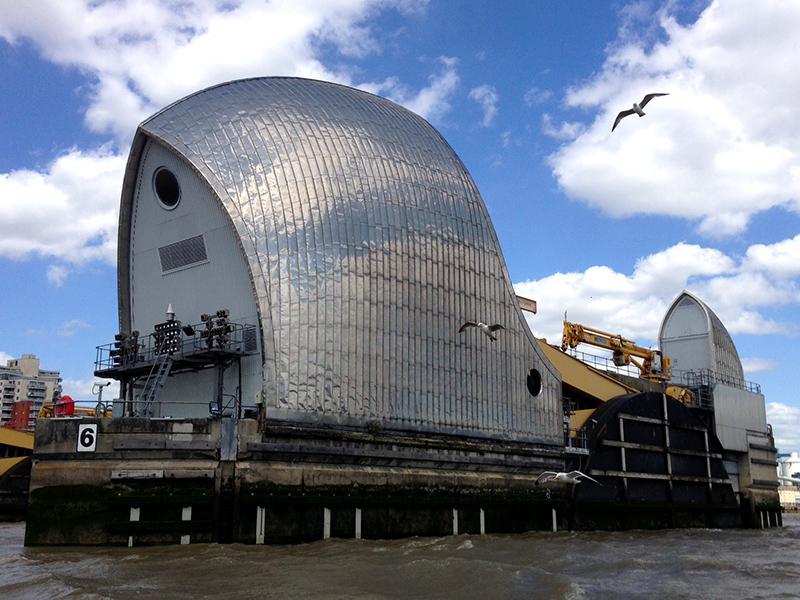 30DaysWild - Thames Barrier Pigeons