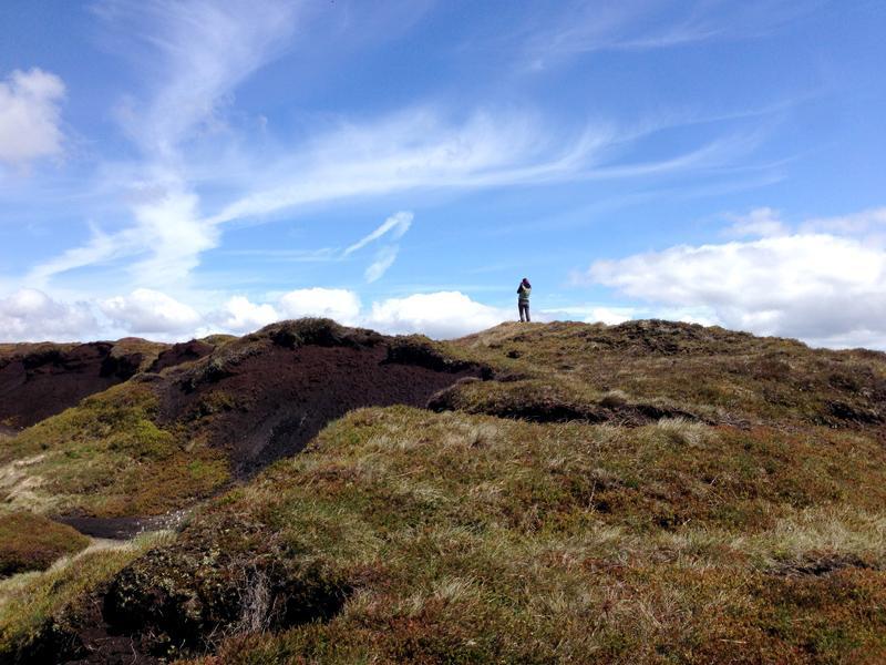 Jenni doing some Hare spotting