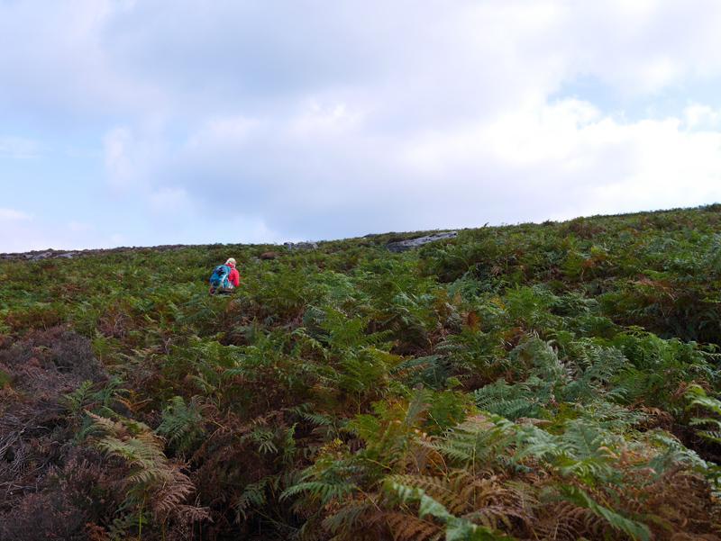 Lyke Wake Walk - Climbing