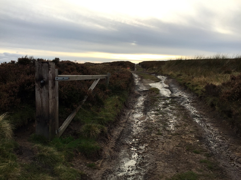 Lyke Wake Walk - Moorland
