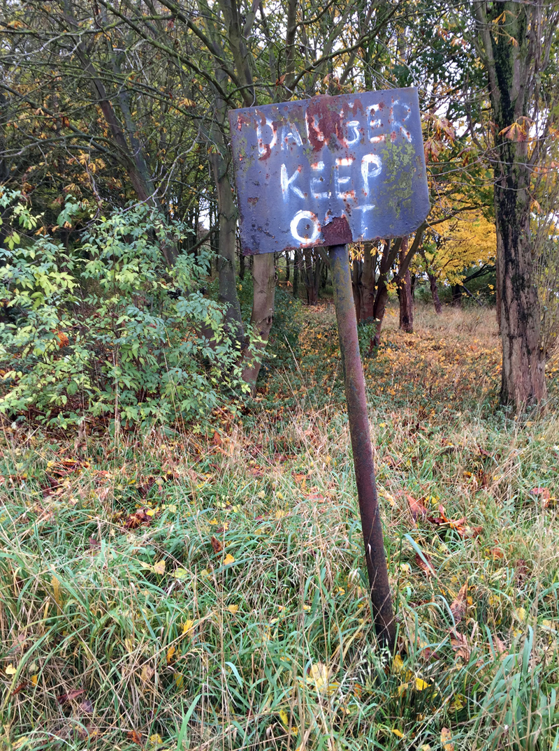 Autumn Walk - Danger Sign | Splodz Blogz