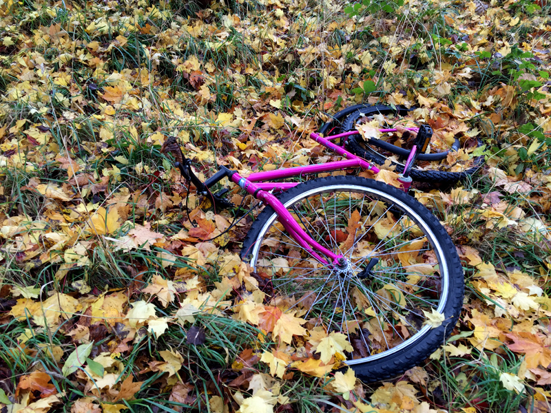 Autumn Walk - Bike | Splodz Blogz