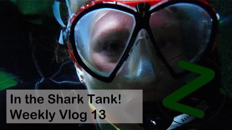 Weekly Vlog 13 Thumbnail