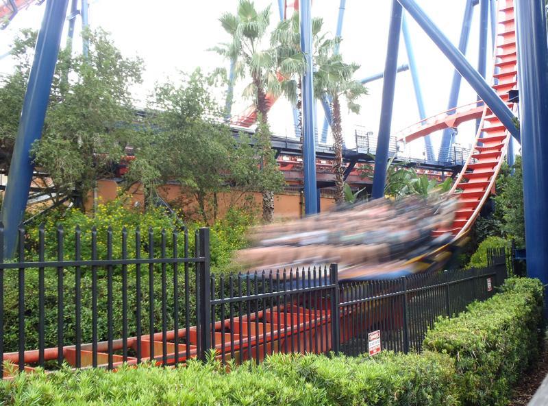 Orlando, Florida - Sheekra at Busch Gardens