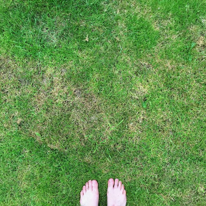 The Splodz Blogz Photo Challenge | Week 30 #SplodzWPC