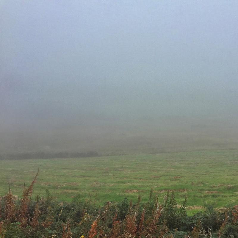 SplodzWPC Fog - Wales in the Fog