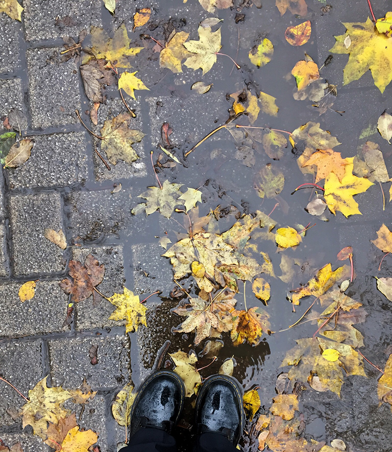 One Hour Outside - Puddle Shoefie