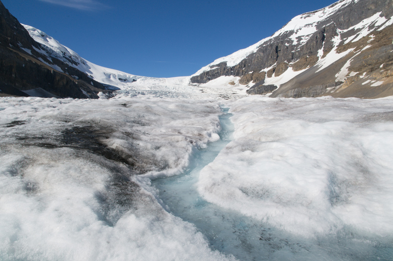 WALKING ON A GLACIER: COLUMBIA ICEFIELD GLACIER ADVENTURE