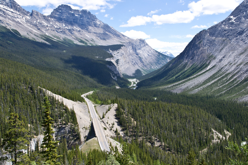 Looking back on the Icefields Parkway