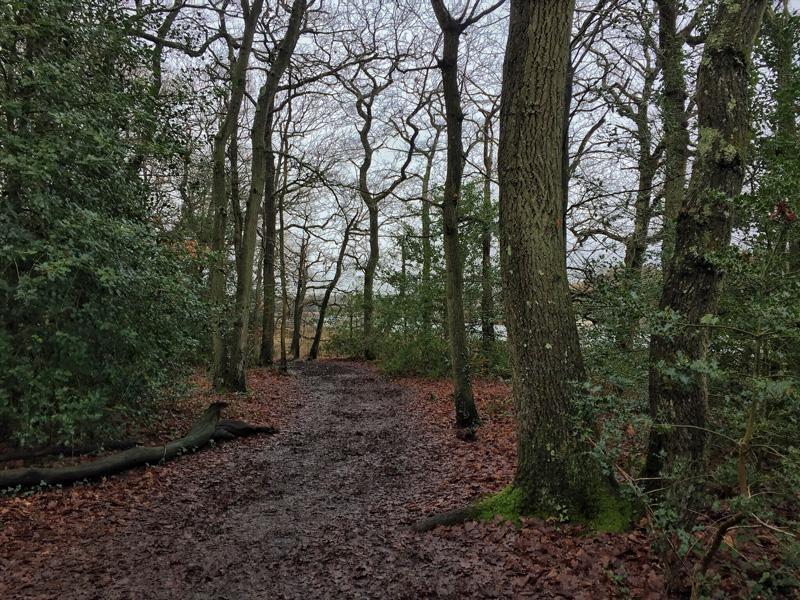 Riverside path from Buckler's Hard to Beaulieu, Splodz Blogz